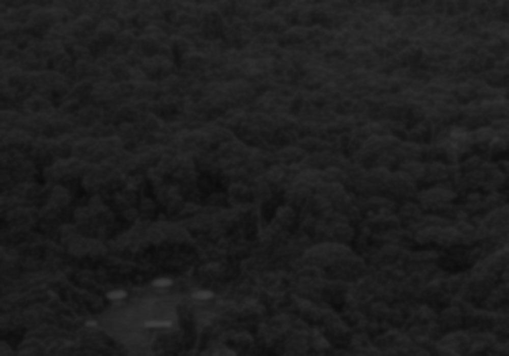 deepcam-blur