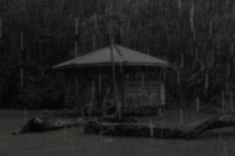 rainbenab-blur