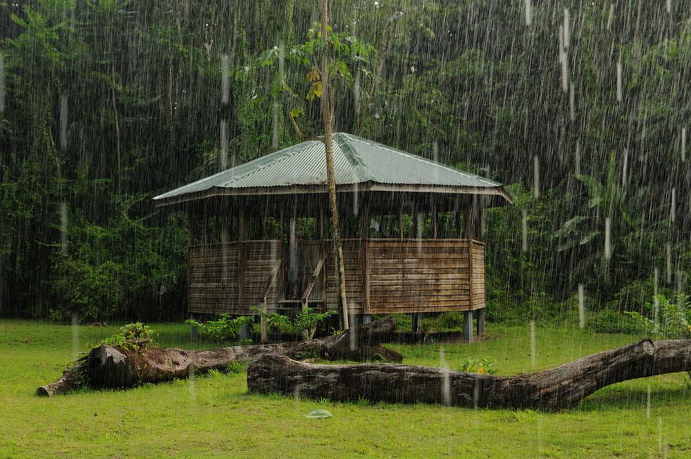 rainbenab